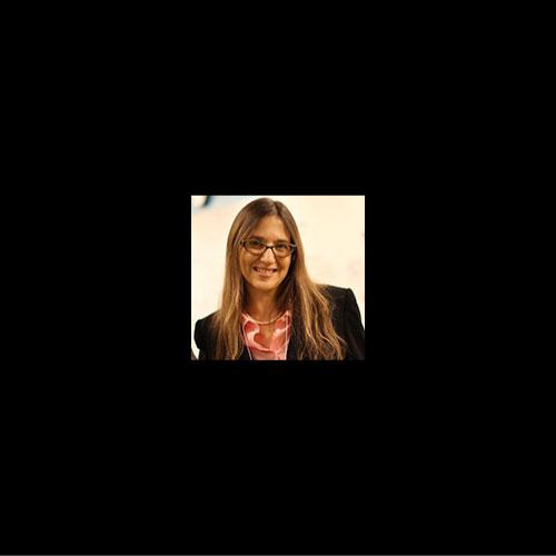 Orit Shaer    Associate Professor, Wellesley College    Wellesley