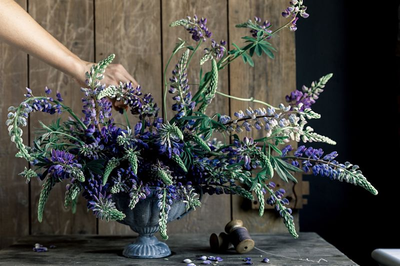 centerpiece_tablearrangement_gesteck_nachhaltig_saisonal_blumen_osnabrück_floralartist_ikoflowers_lupinen.jpg