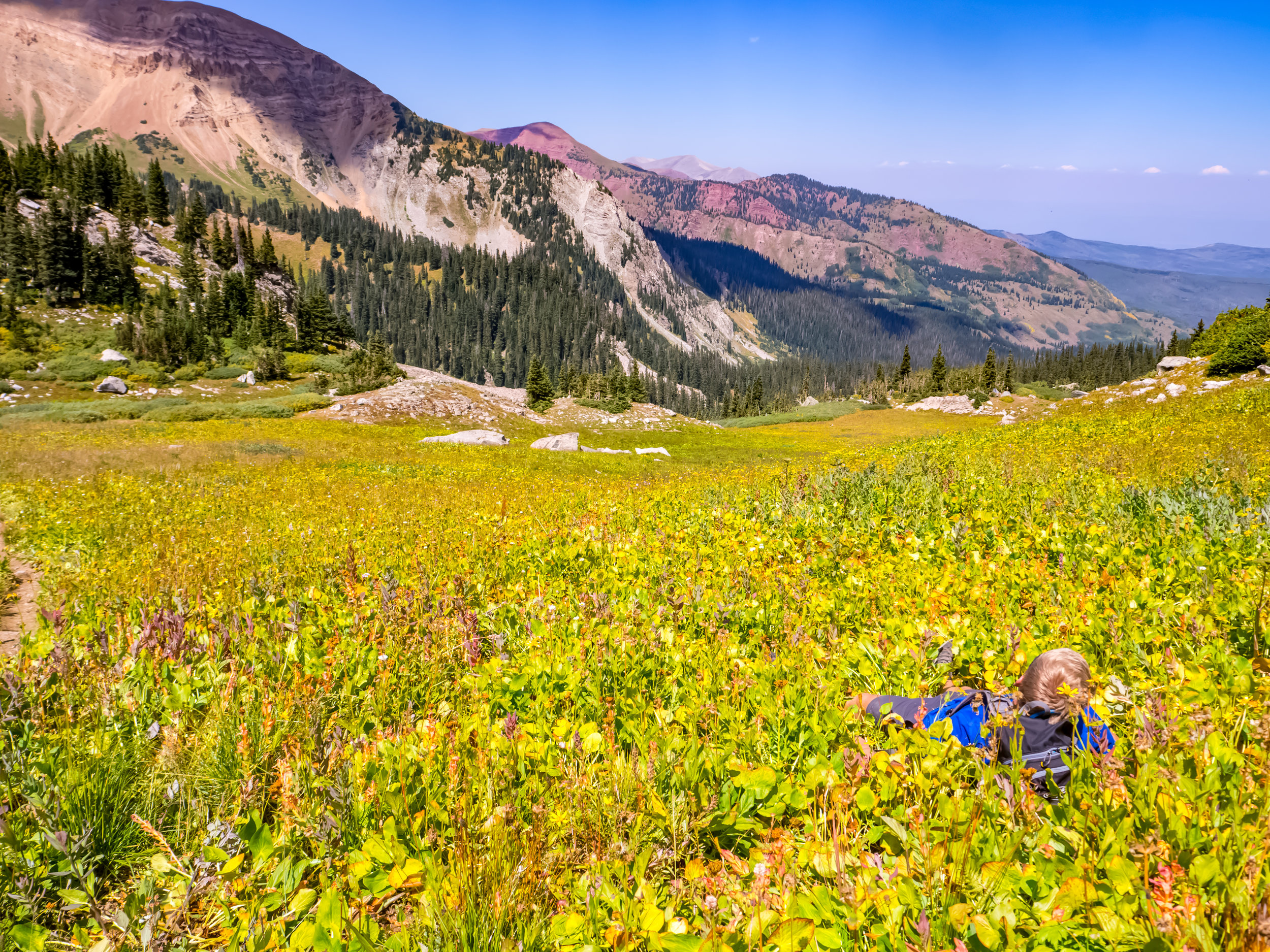 Moving fast, but taking time to smell the flowers on the descent.