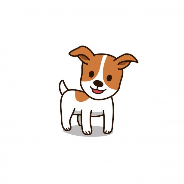 MISSING: Sarah, a Jack Russell Terrier went missing from Beresford Creek Street earlier today. She is white/tan and very timid. She may be microchipped but likely unregistered. Her owner is in the hospital and the pets are being cared for by a friend. If you spot her please call Lisa at 843-303-6309 or Joanna at 206-402-1226.