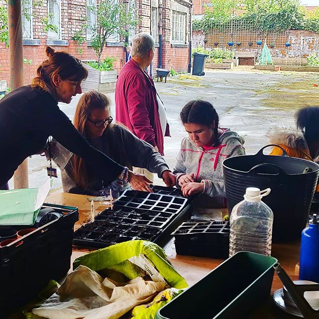 Great gardening session today! Seeding tomatoes, sunflowers, marigolds and lots more! #growingtoxteth #gardening #garden #seed