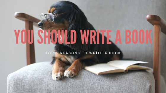 You Should Write a Book.png
