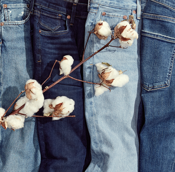 3. World's Most Sustainable Denim? - AGOLDE x Amour Vert say so.