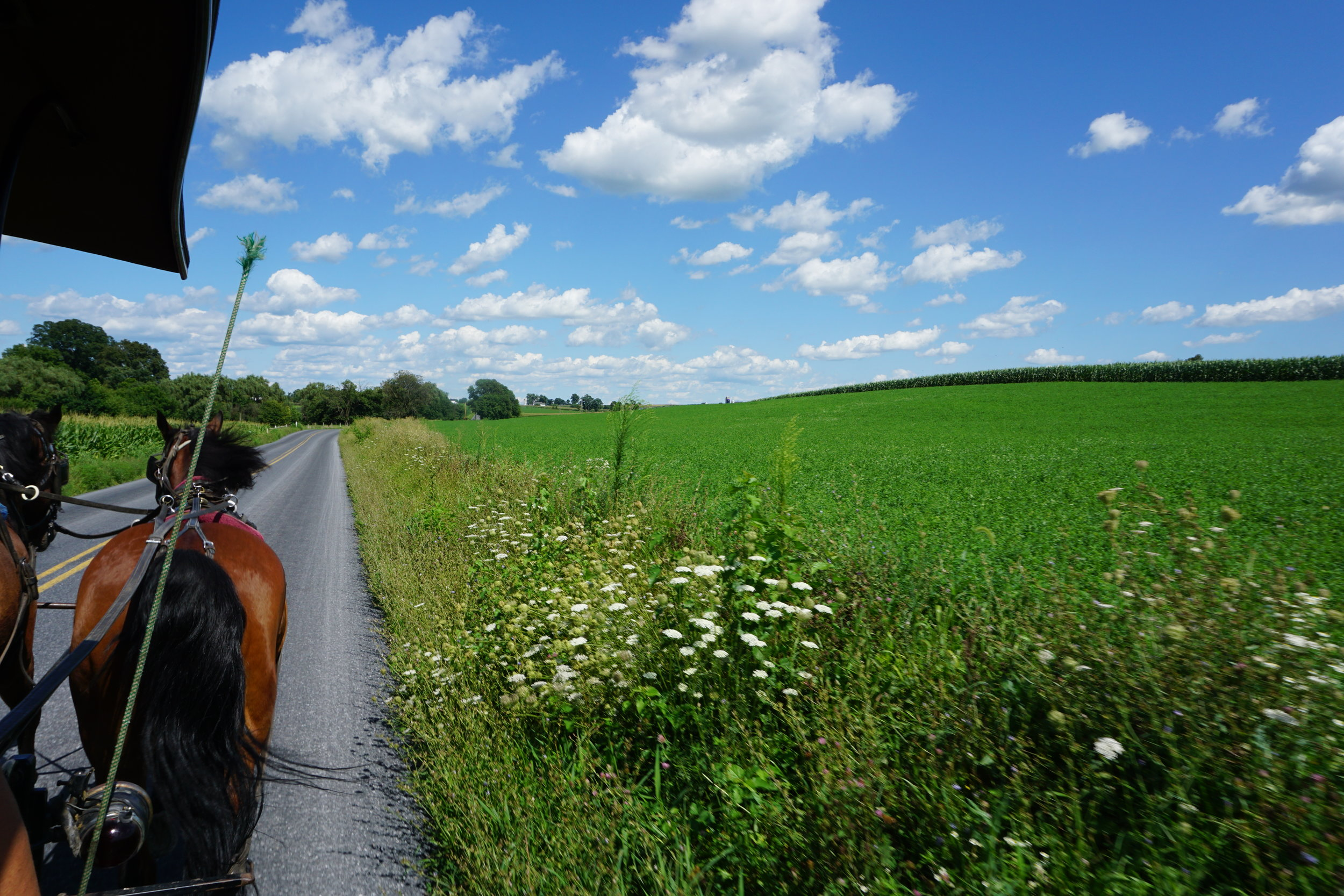 Day Trip: Amish Country, PA