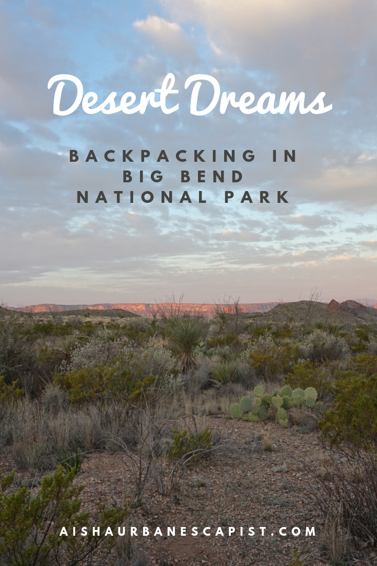 Desert Dreams Big Bend Pinterest.PNG