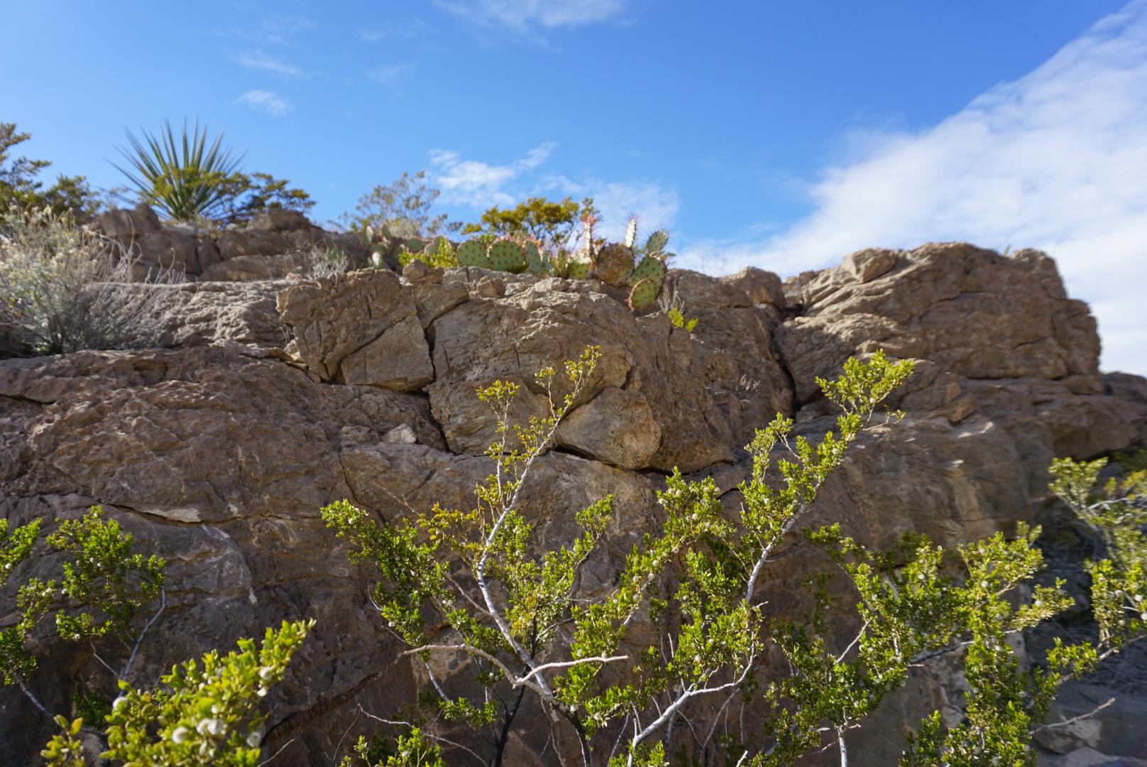 Franklin Mountains State Park El Paso Texas.JPG