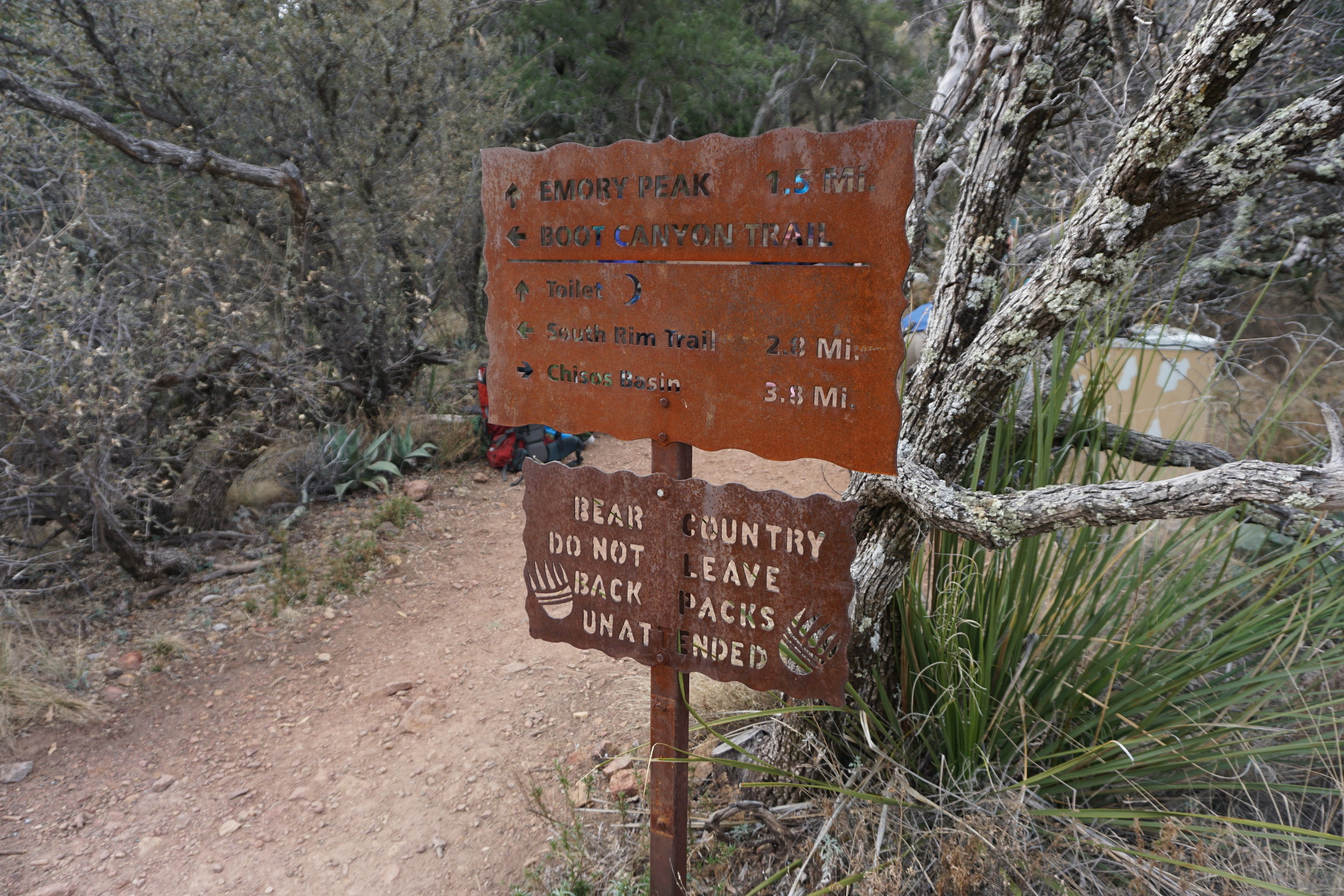 DSC04199 Emory Peak sign Big Bend Texas.JPG