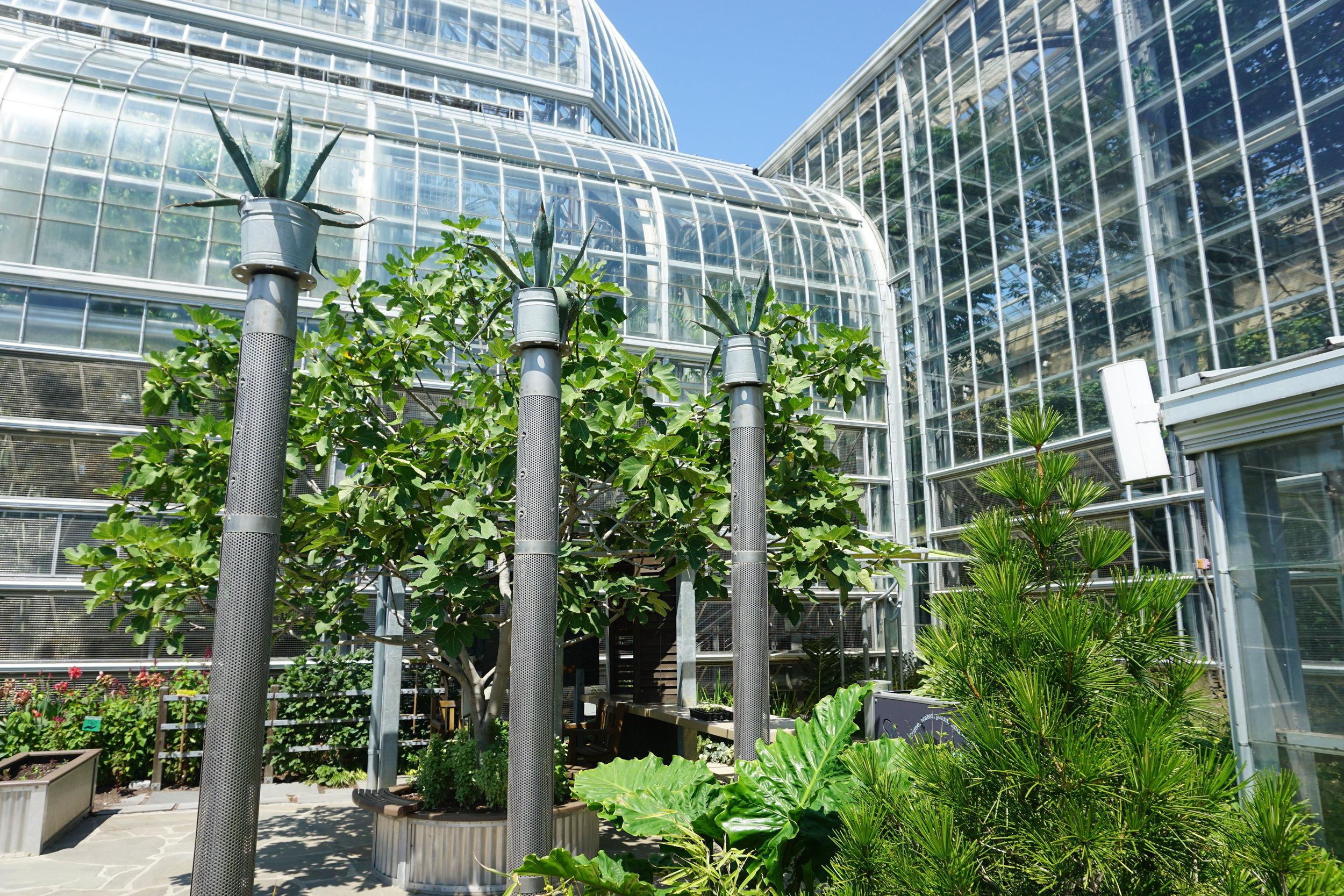 US-Botanic-Gardens-Washington-DC.JPG