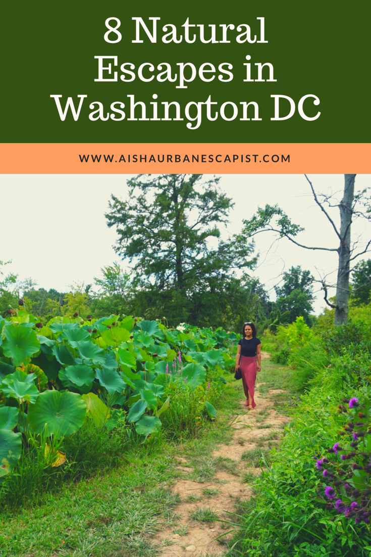 Natural-Escapes-in-Washington-DC.PNG