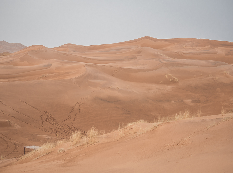 Alexandra-Marie-Interiors-Travel-Photography-Prints-Morroco-Safari-Merzouga-Desert-24.jpg