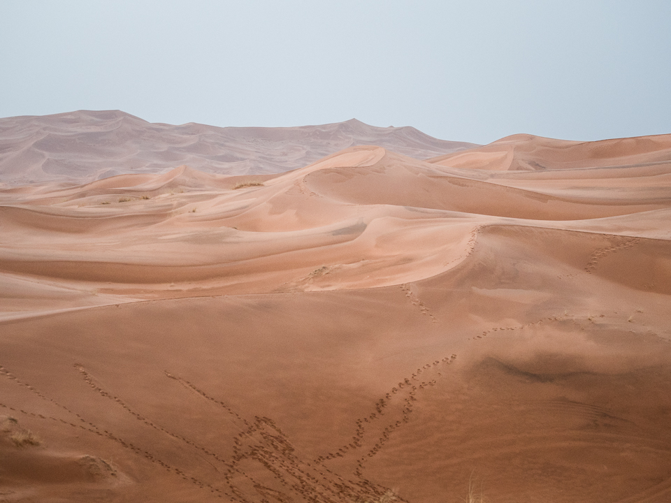 Alexandra-Marie-Interiors-Travel-Photography-Prints-Morroco-Safari-Merzouga-Desert.jpg