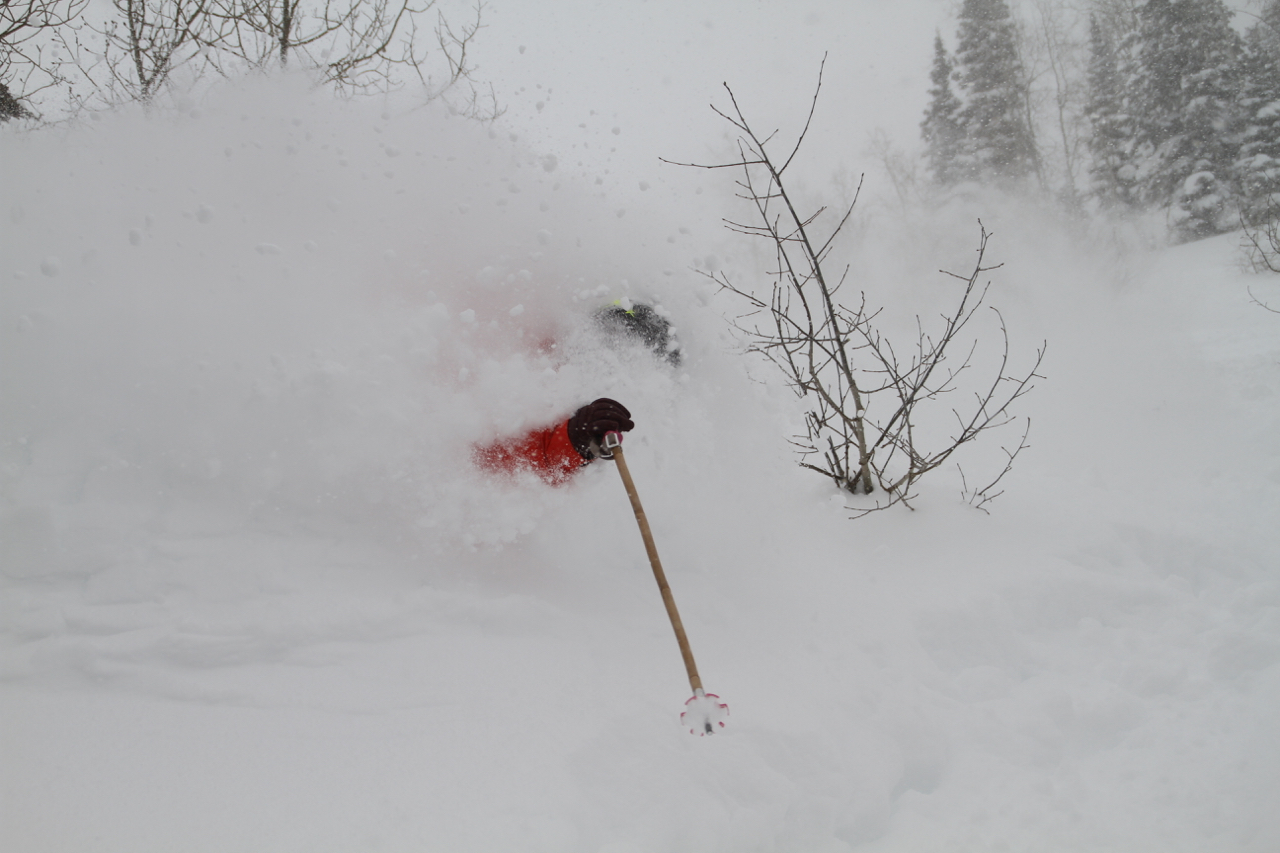 Snowbird, UTAH, USA. Skier: Claire Smallwood CHASEWINTER/SPENCER FRANCEY