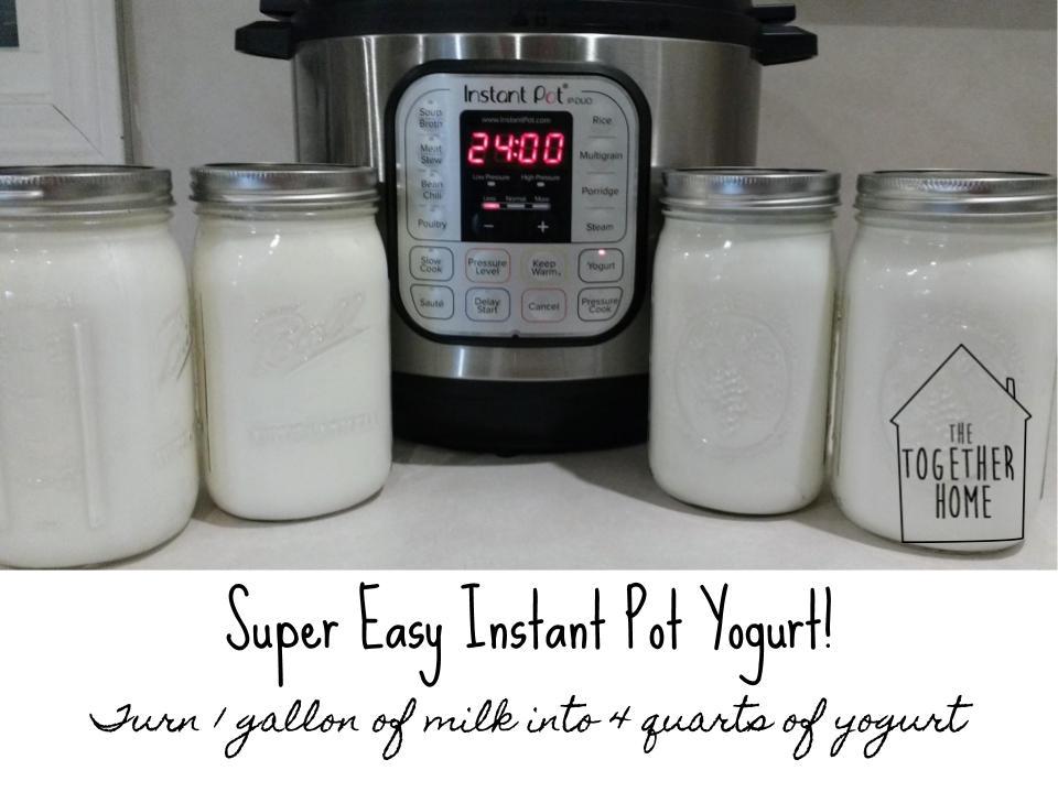 instapot yogurt main  (1).jpg