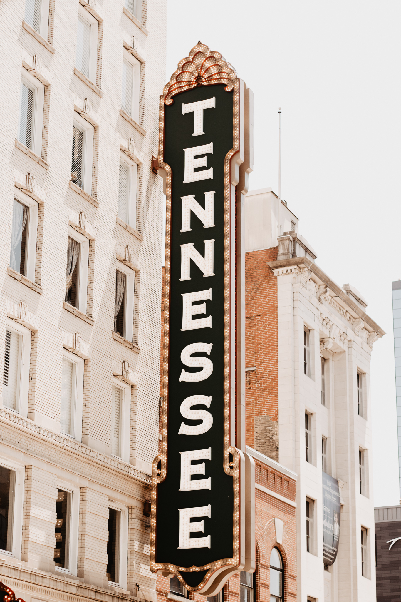 Knoxville Travel Guide | Catherine Milliron Photography