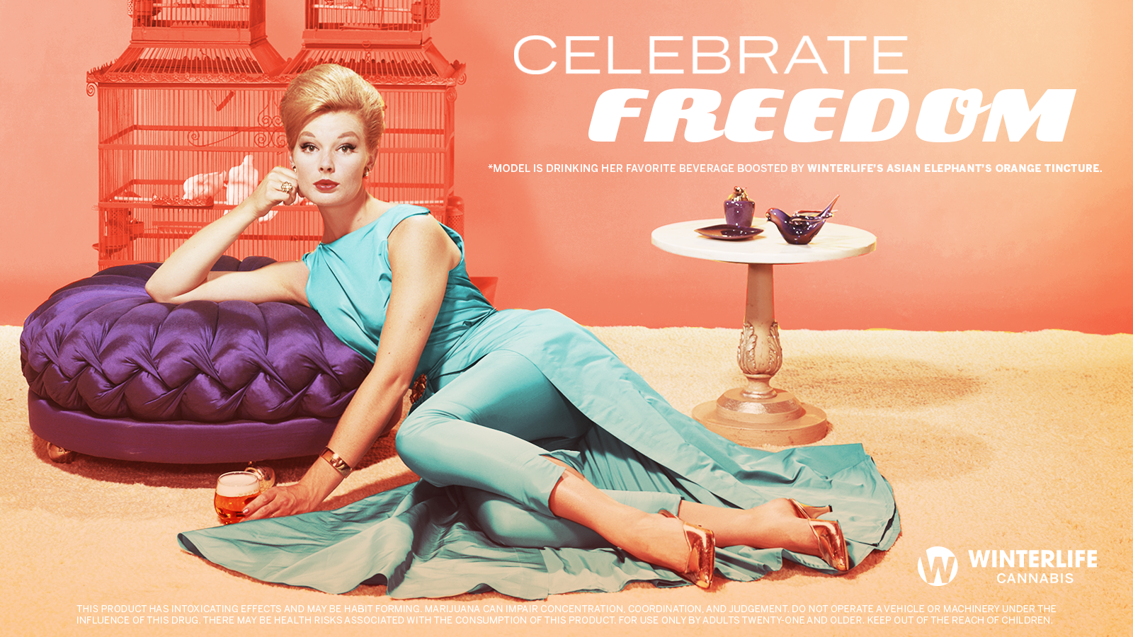celebratefreedomretro_websiteslide_version2.png