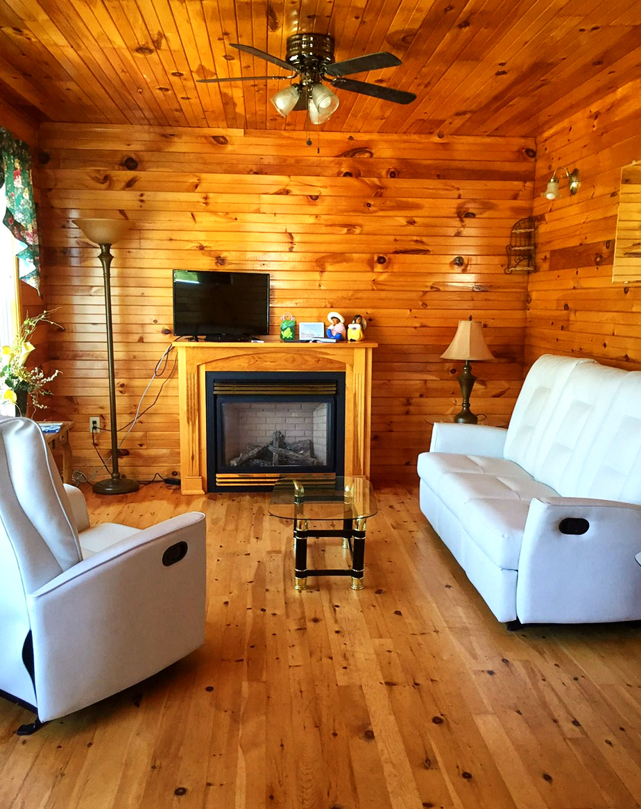 Comfortable pine-finished living room