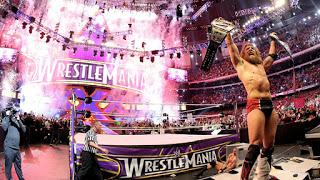 Daniel Bryan at WrestleMania 30 (WWE)