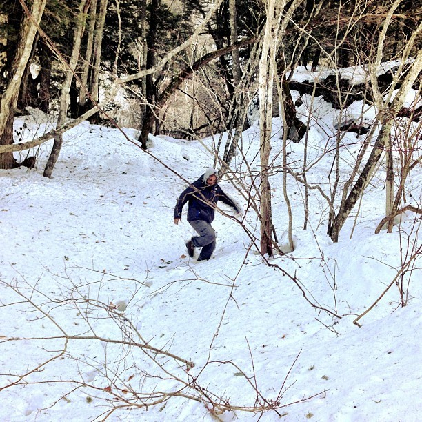 Everybody's boy Lil Lo krumping in scummy snow. Too much skills. @laurent_fintoni #hakuba #japan #krumping #crunk #gangsta #ghettotrees #hoodnature