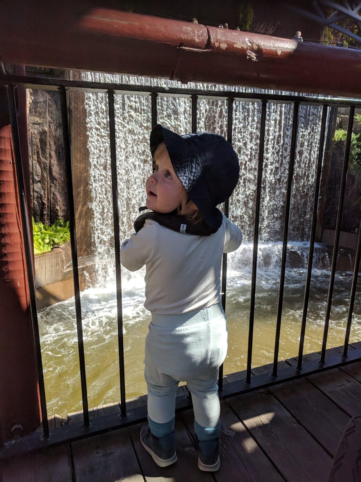 Spännande vattenfall på Borgbacken!