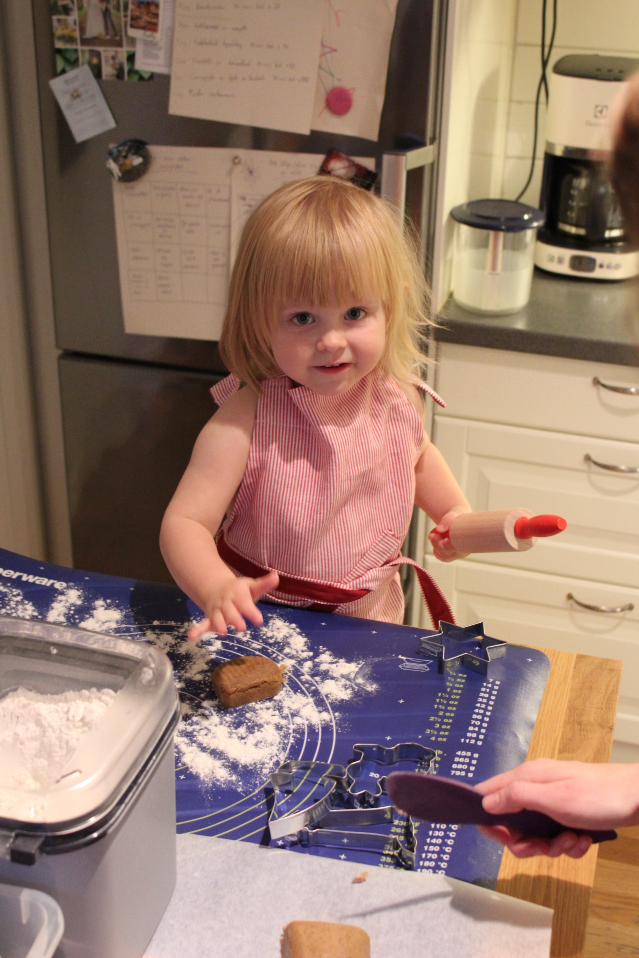 God jul önskar den här lilla pepparkakstjejen!
