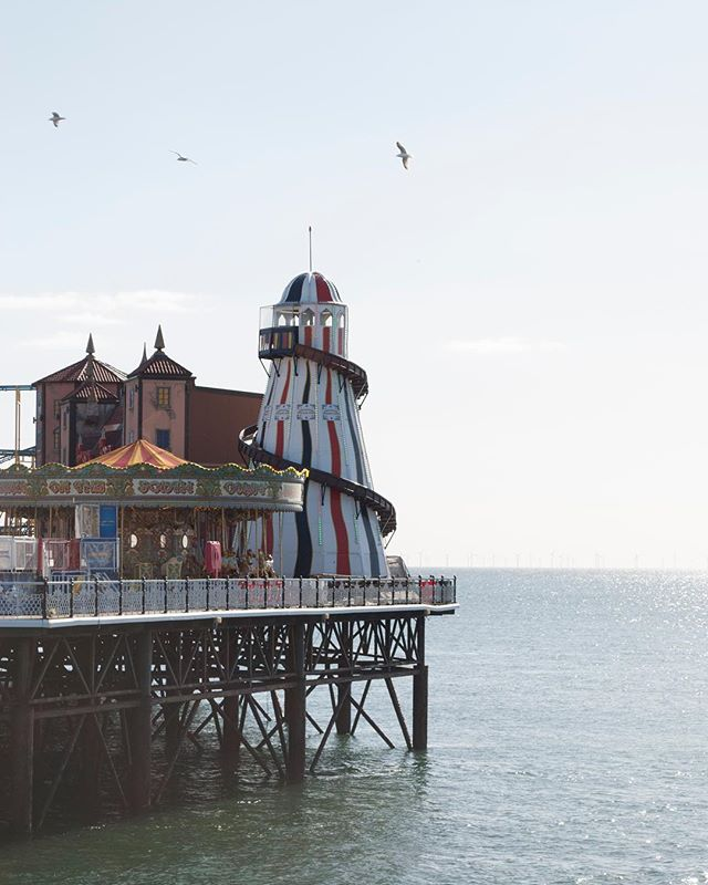 Brighton Palace Pier - 2019.03.25.🎡 . . . . #seagulls #atlanticocean