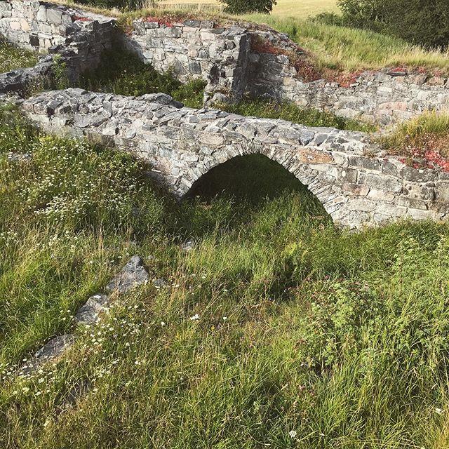 Nämen, vilket fint valv! Det här måste undersökas! 🤔 . . . . #ragnhildsholmen #ruin #ruins #upptäcksverige #borg #valv #arches #sommar #semester #oldschoolarchitecture #typettslottfastenborg