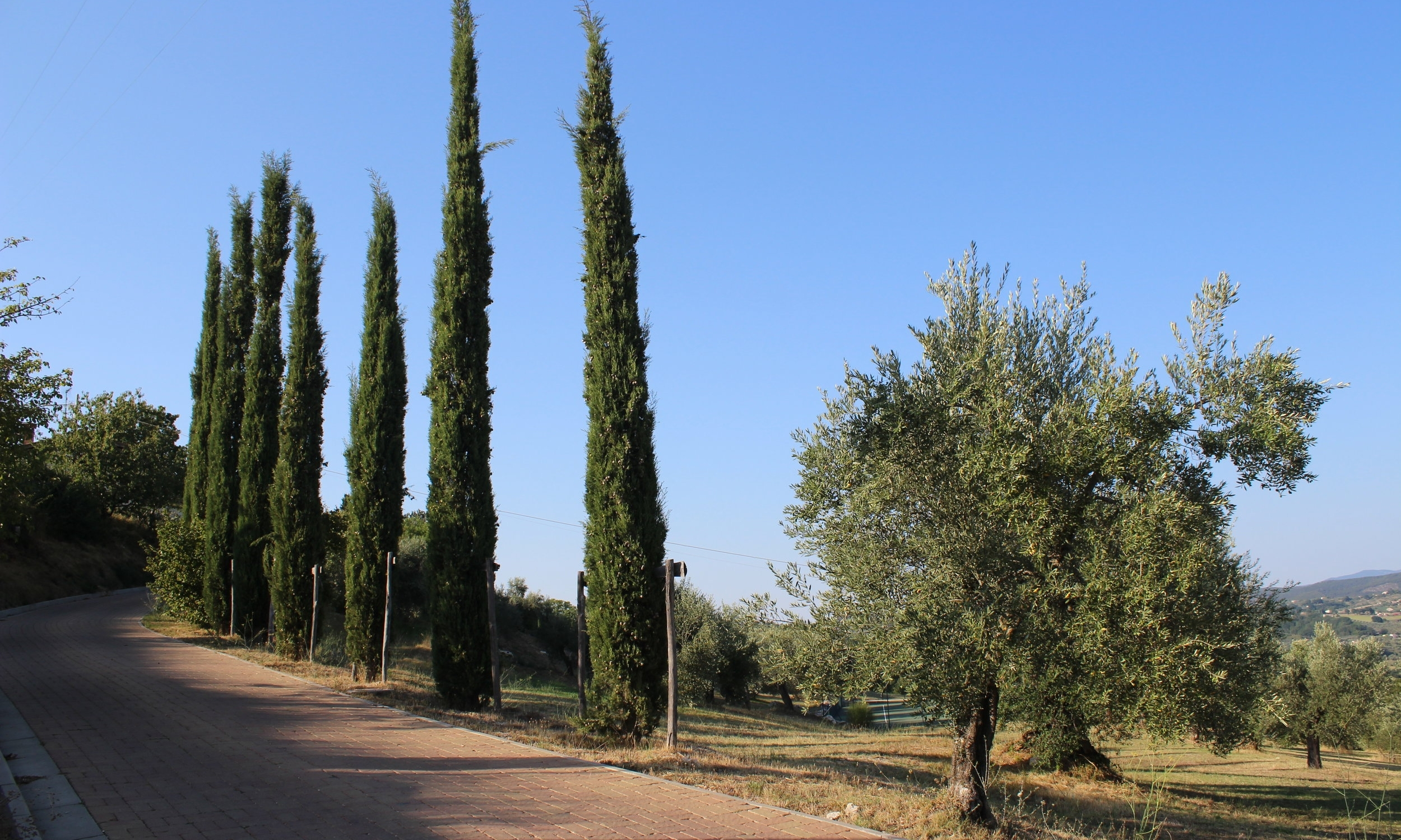 Walking through the heart of Umbria