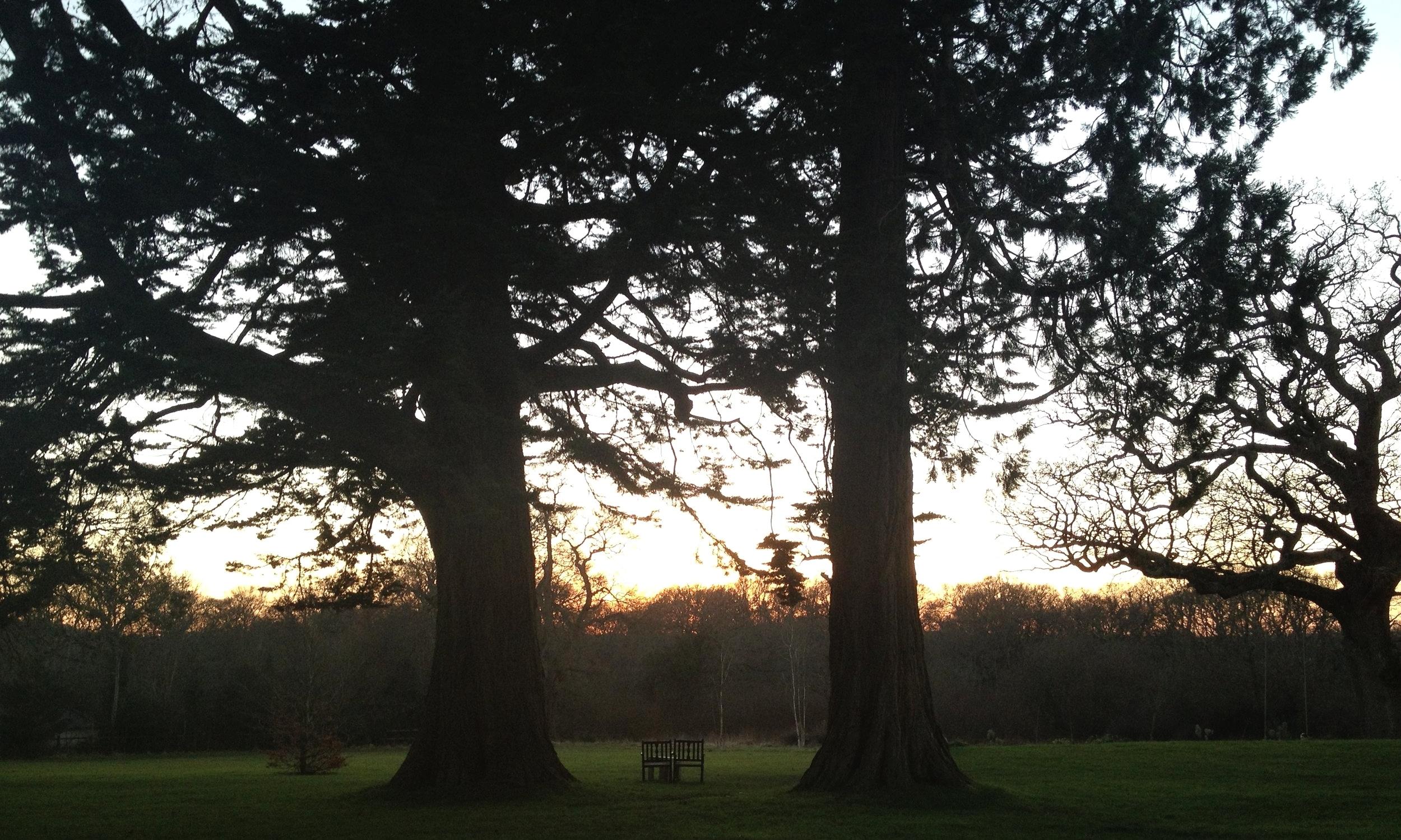 The beautiful grounds of the Pig Hotel, Brockenhurst