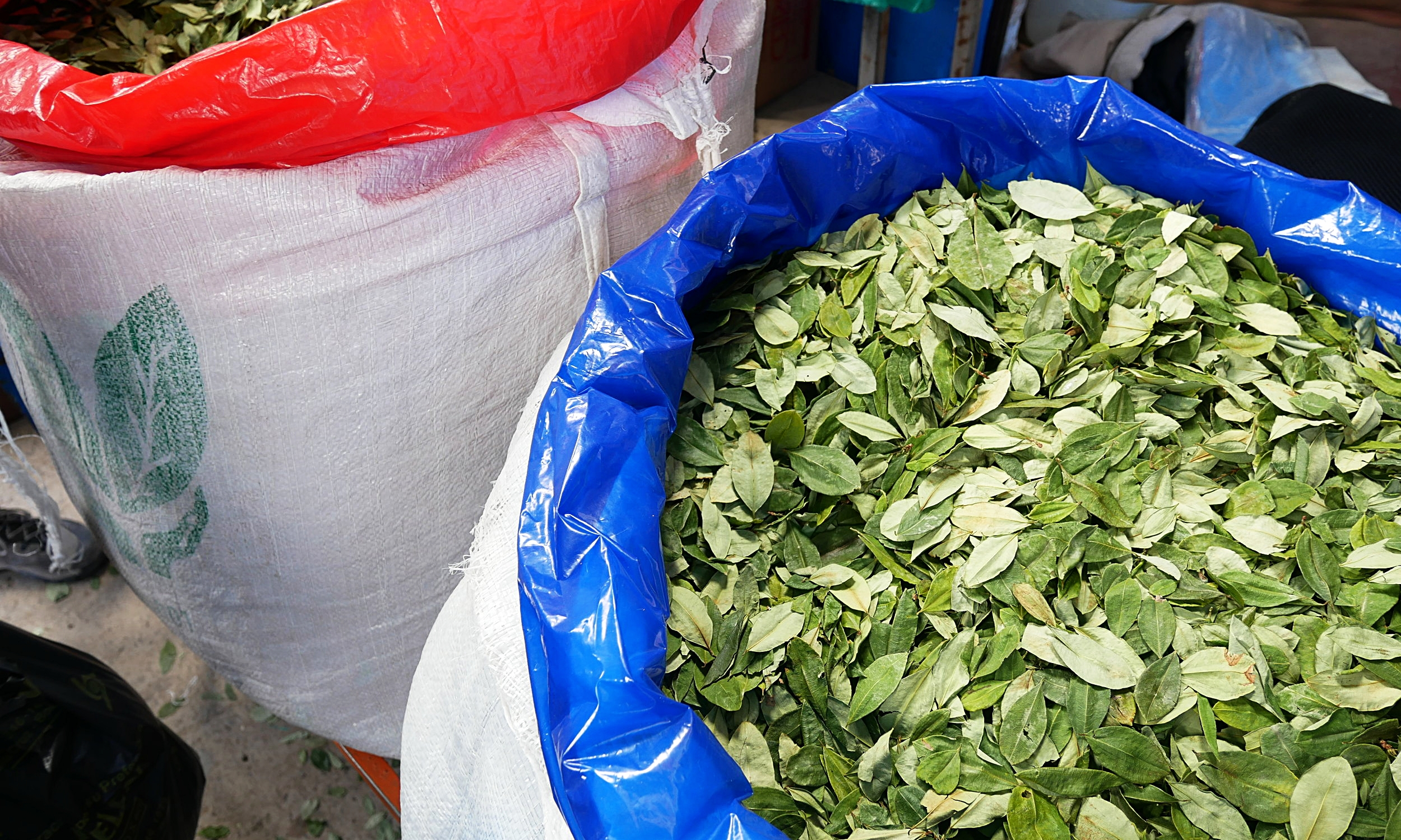 Coca leaves, Tarabuco Market