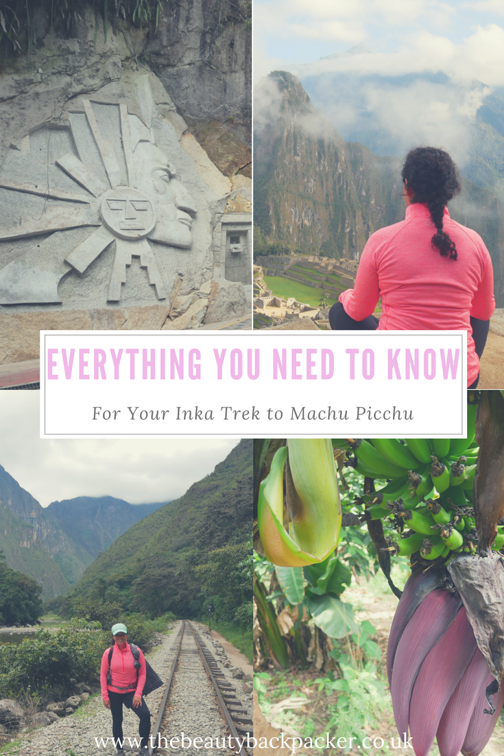 Everything You Need to Know for Your Trek to Machu Picchu