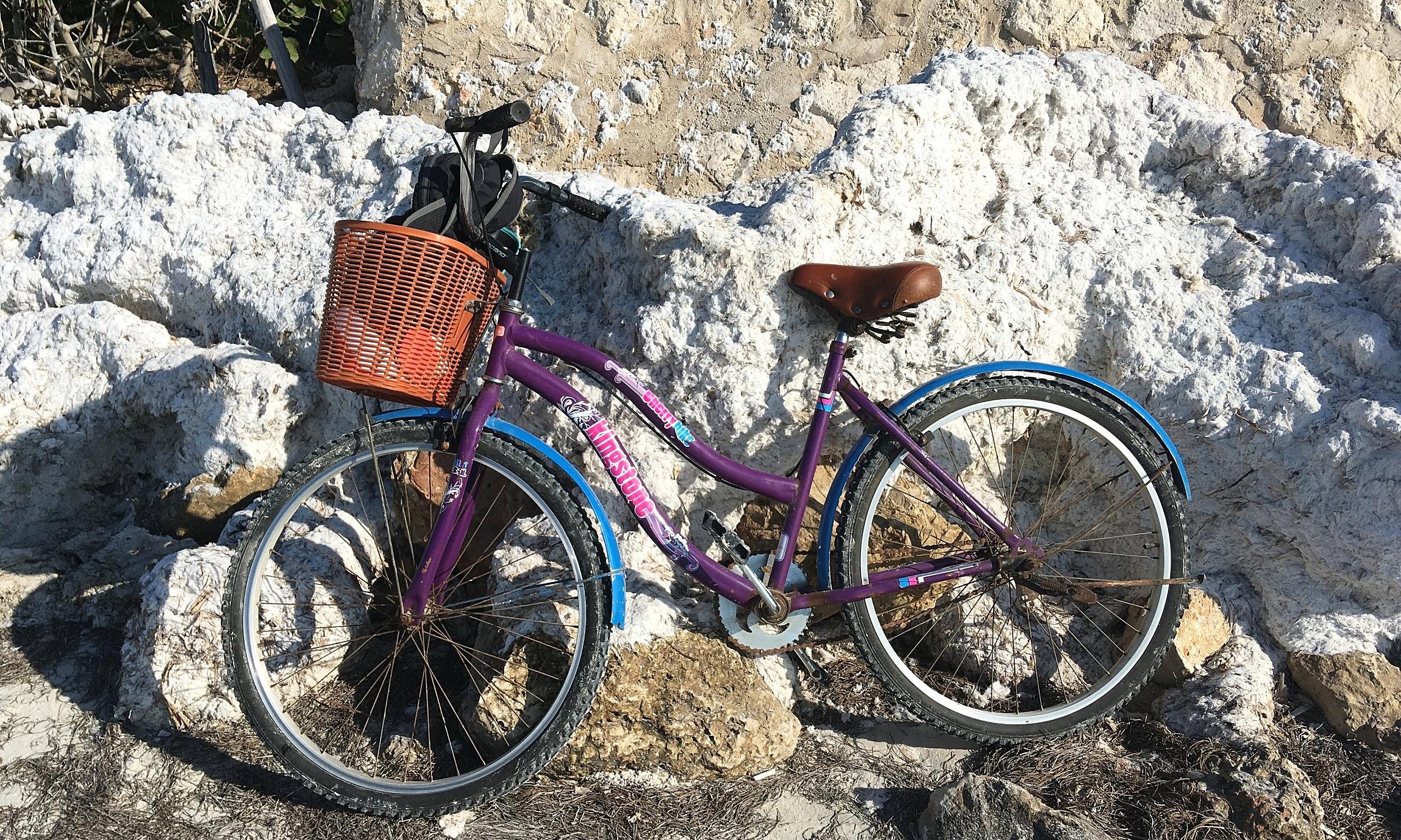 My bike bestie