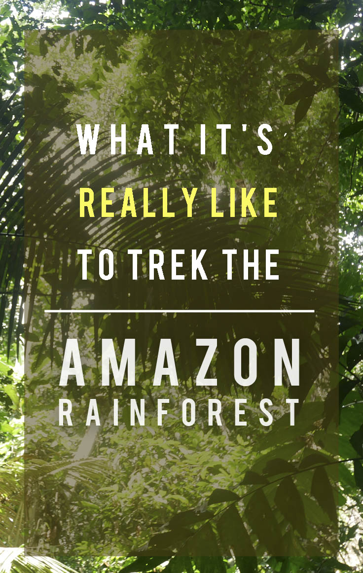 What It's Really Like to Trek the Amazon Rainforest.jpg