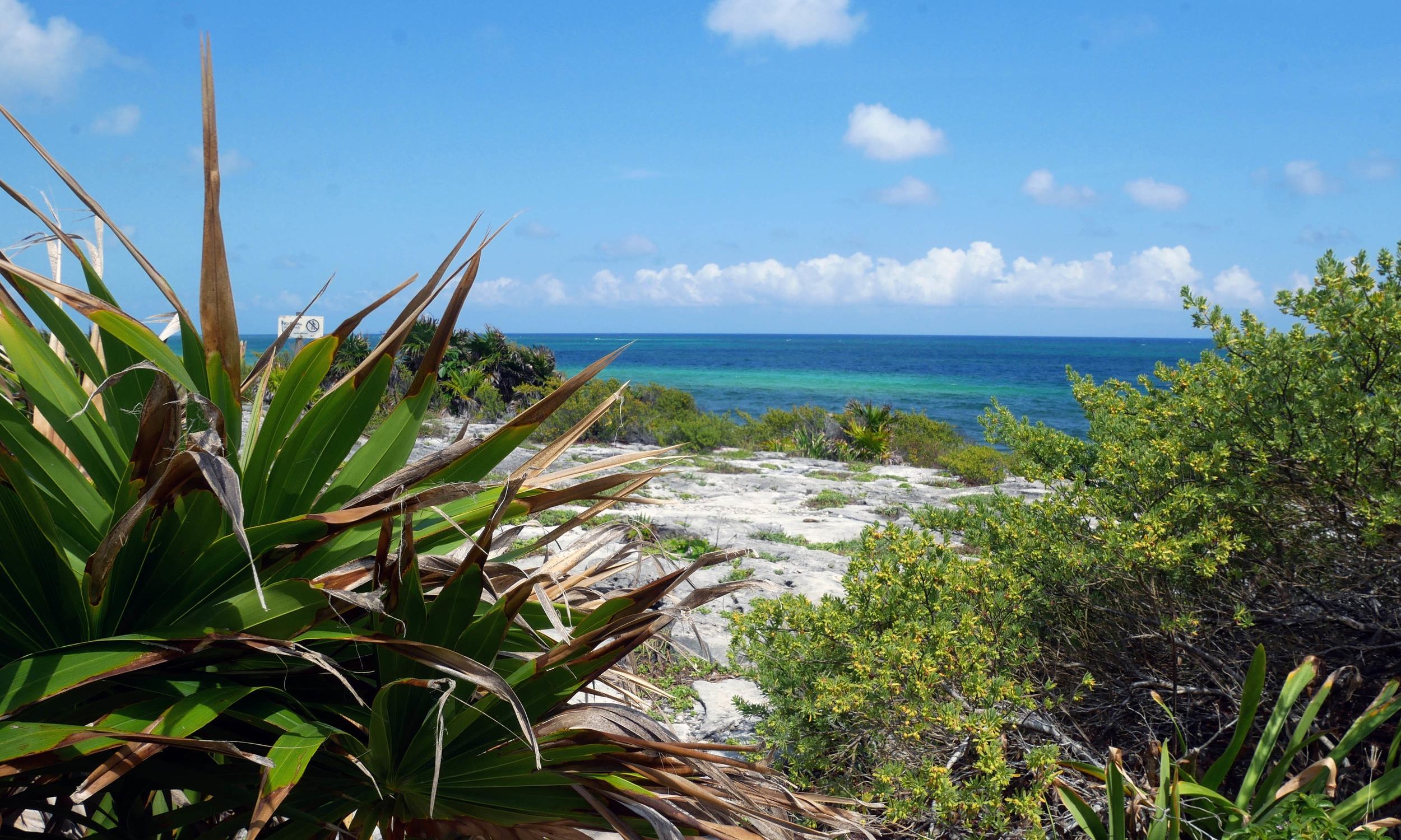 The view from Tulum Ruins. Not too shabby, hey?