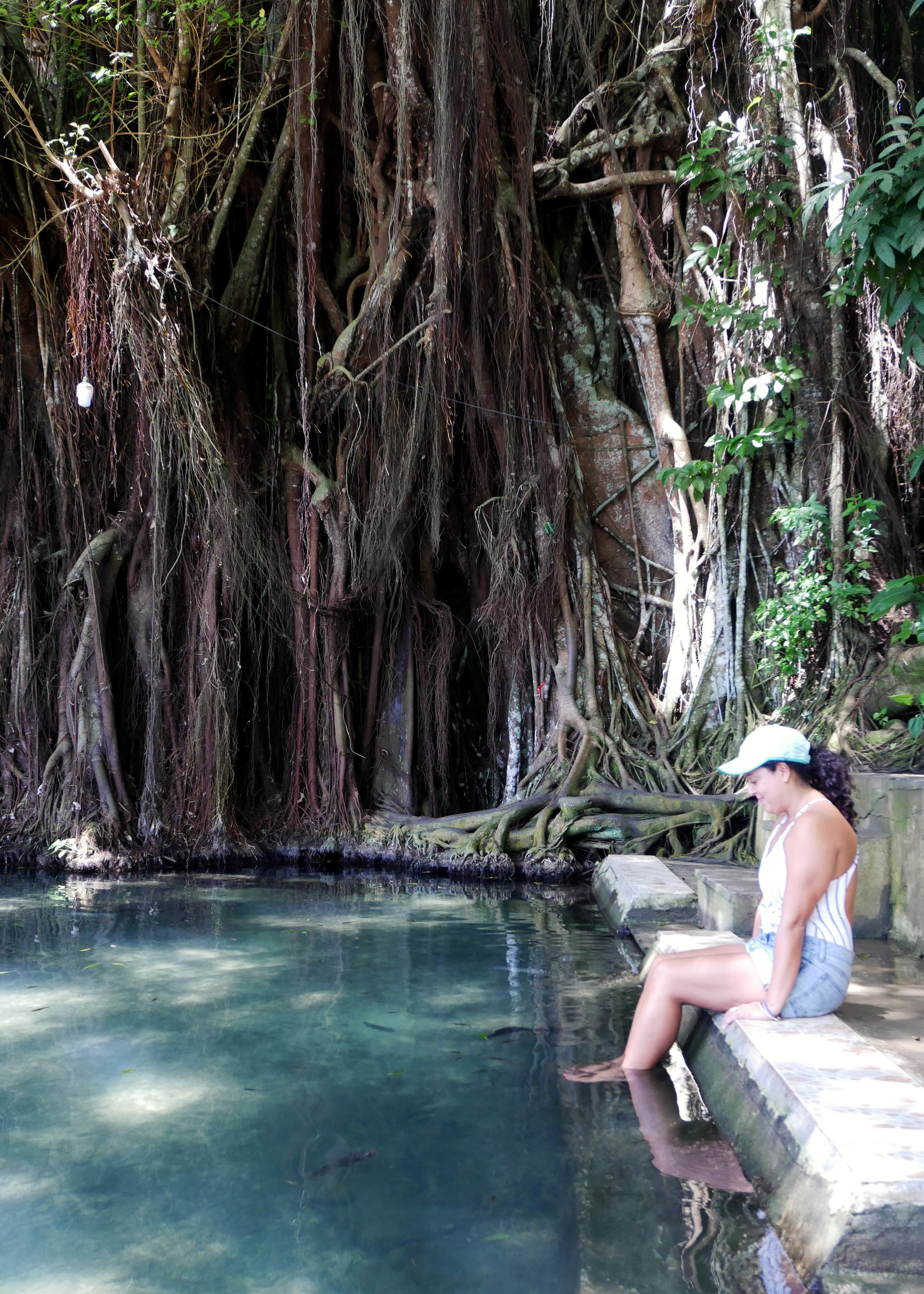 Getting a natural pedicure at the Ancient Balete / Bayan tree