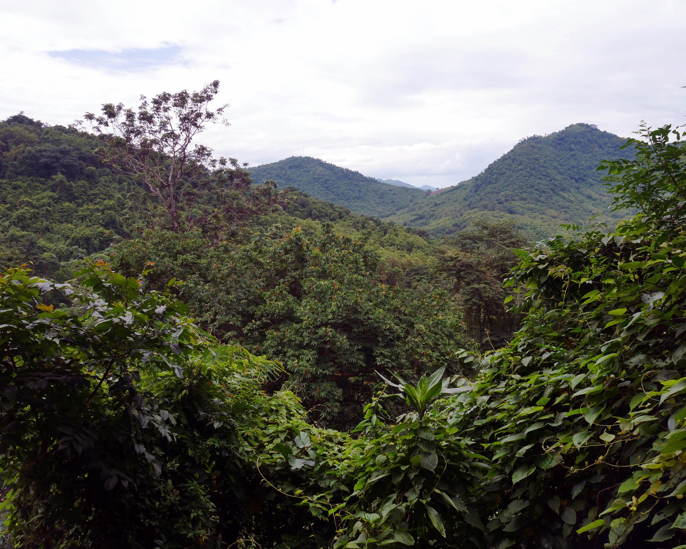 View from the top of Kuang Si Falls