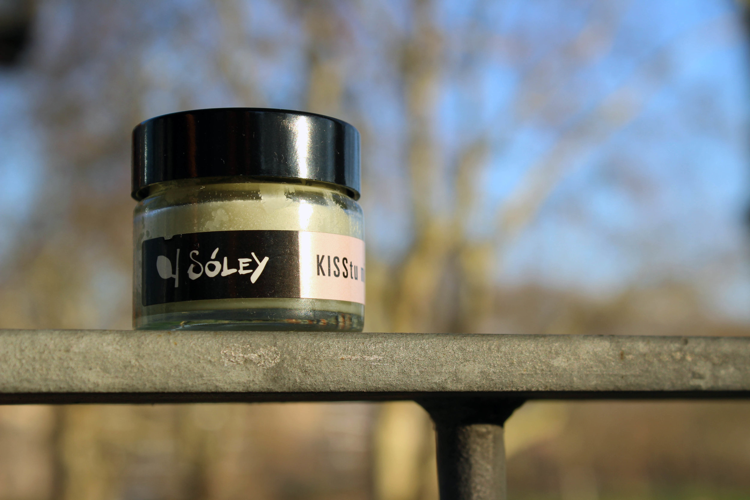 soley organics icelandic skincare and beauty brand.jpg