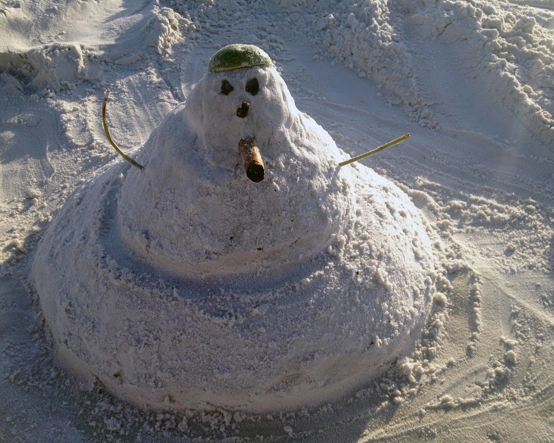 This is how you build a snowman in Tampa, Florida