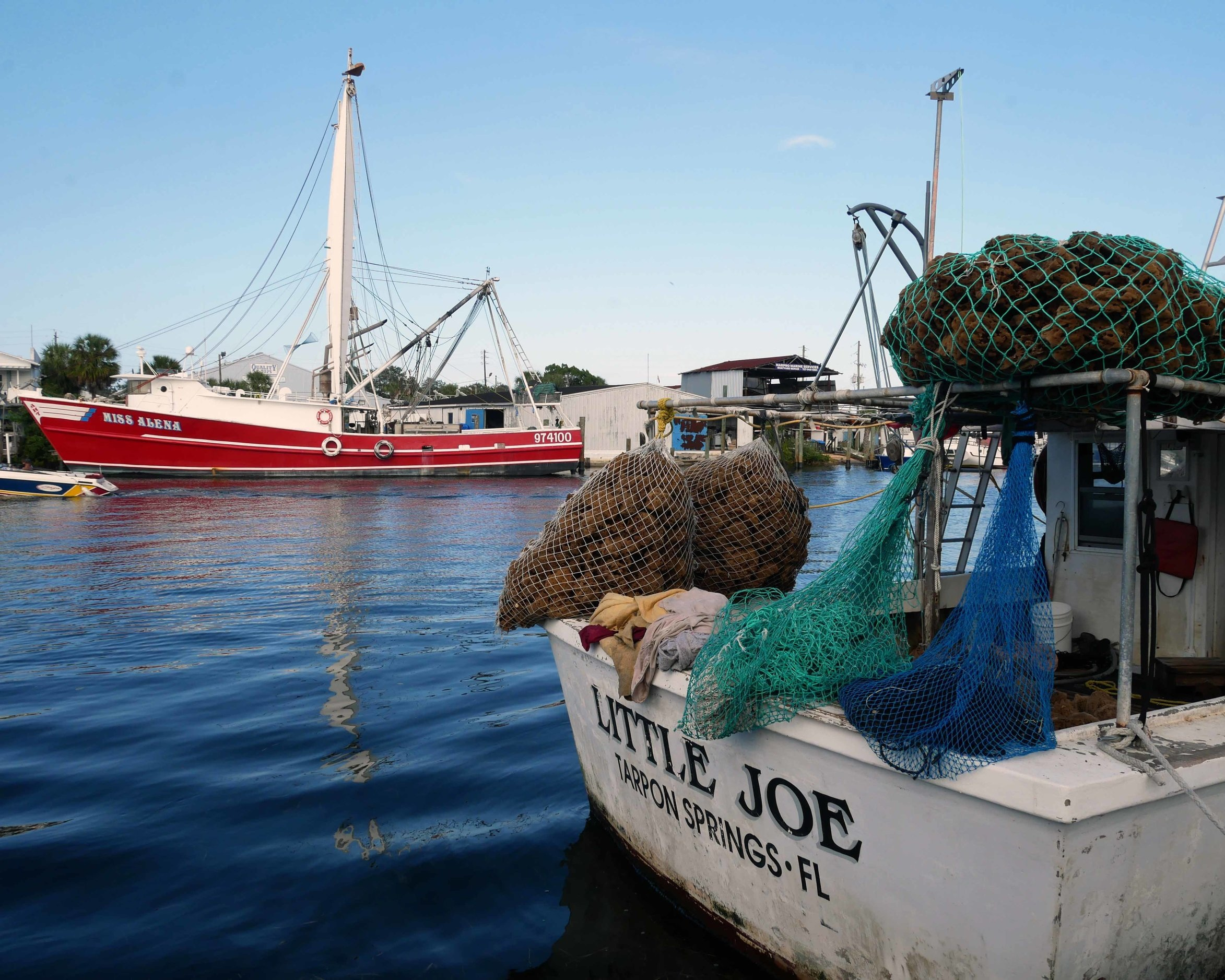 The sponge docks in Tarpon Springs, where sponges are still harvested today