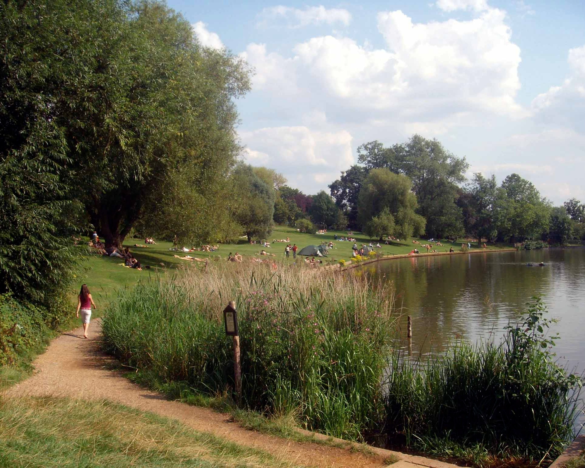 Beautiful Hampstead Heath during a London heatwave