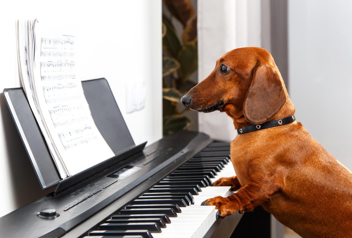 Piano Books -