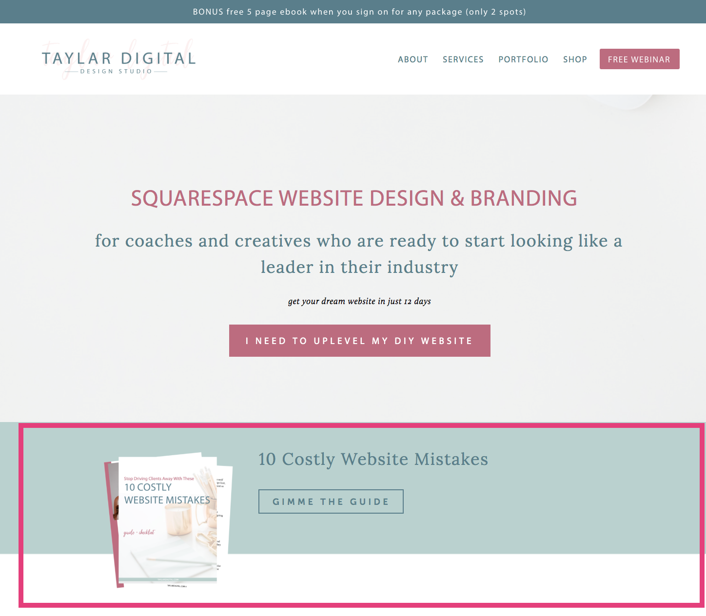 7 Places to Promote Your Freebie on Your Squarespace Website 4.png
