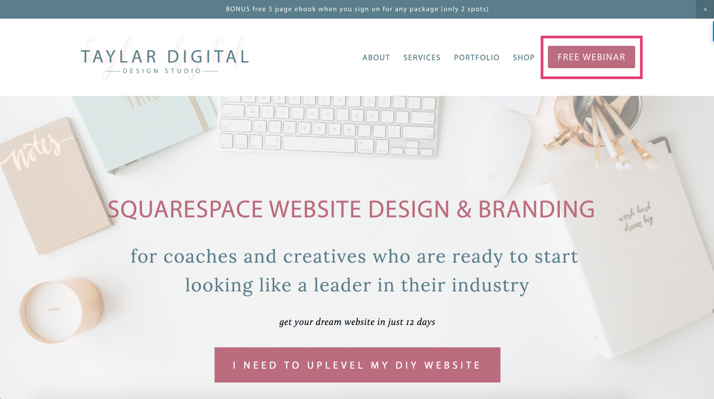 7 Places to Promote Your Freebie on Your Squarespace Website 2.png