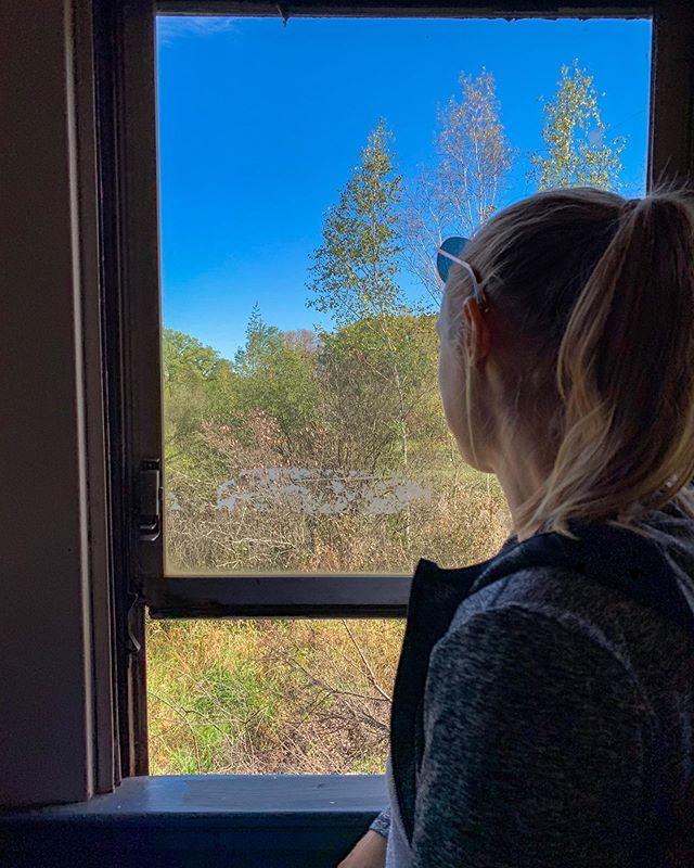 Searching for fall colors. Haven't found a ton yet, but went on a pretty train ride! Spoiler alert, my office doesn't have any windows, so the search isn't going well currently. . 📌 Wahpekute, Anishjnabewaki, & Sioux land . #gradschool #onlyinMN #exploreminnesota #minnstagram #midwestmoment #fall
