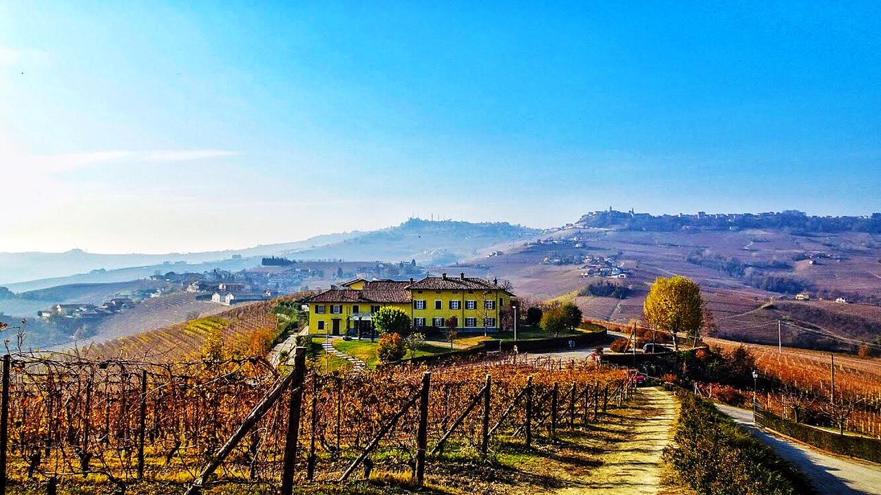 Por estas colinas da Langhe, o Festival Collisioni leva arte, musica acompanhada de um dos melhores vinho do mundo, o Barolo