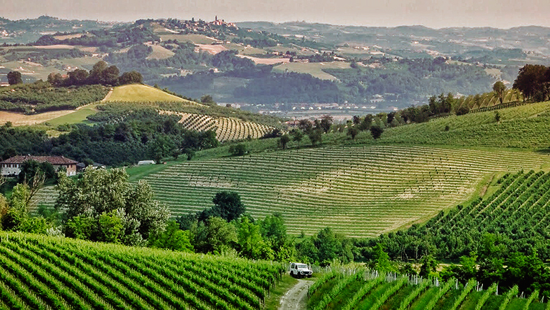 Monferrato - Piemonte