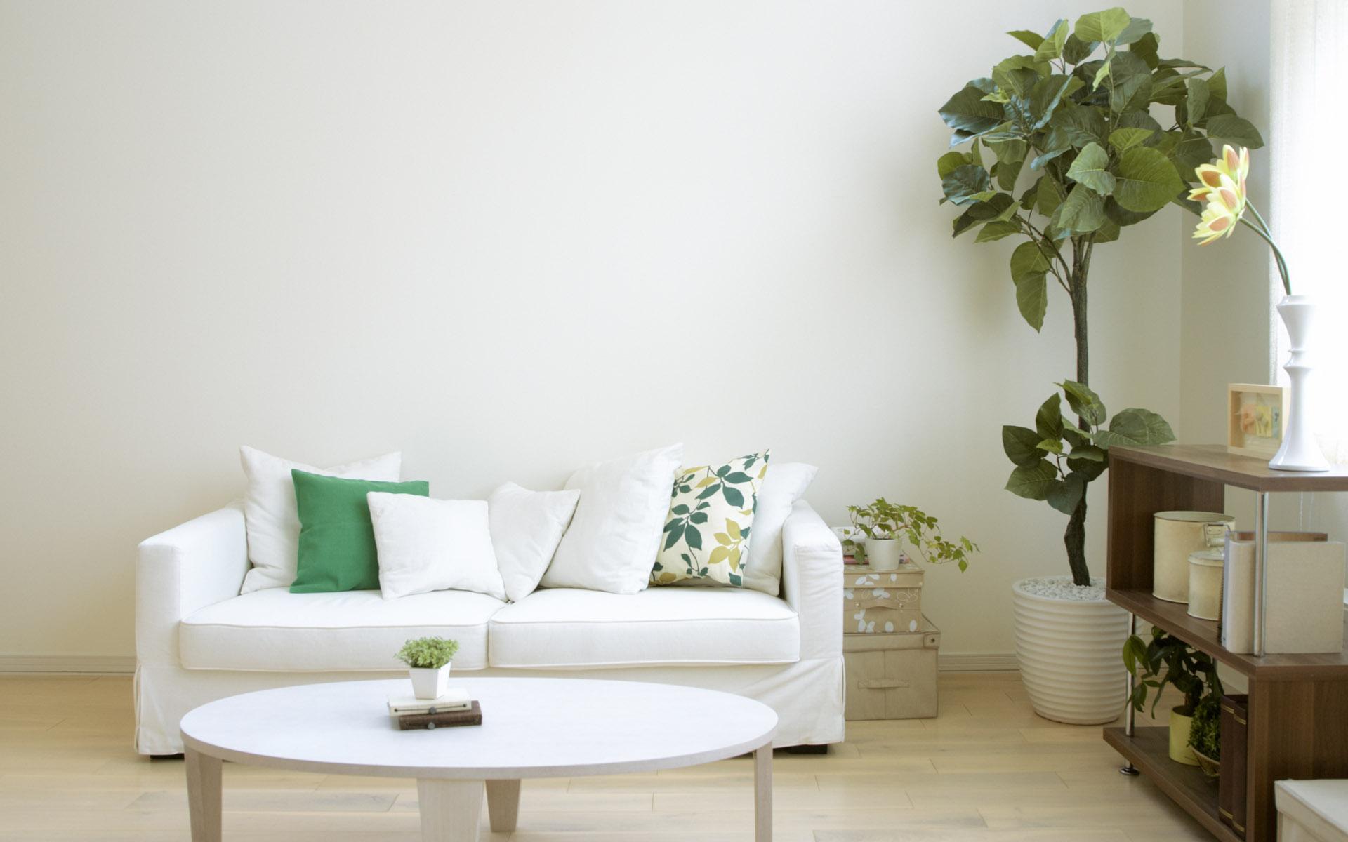 whitegreen2.jpg