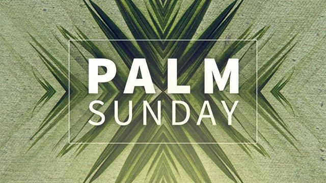 """Mark 11:1-10 """"Save us, Lord, save us!"""" """"Hosanna in the Highest"""" """"Son of David — Son of God, do what you have come to do!"""" . . The cries of the people echoed the palm laid streets as the crowds created a parade for the peasant son on a donkey colt. Hopes are high. Change is brewing. This is the scene of Palm Sunday. But Jesus is coming on his terms to do his Father's work. The shouts of celebration of Palm Sunday will soon turn into cries of """"Crucify Him"""". Today as we celebrate Palm Sunday, let us remember our savior — or Hosanna. The one who saved us. The one who changed us. May we honor him today. May we praise him this week. May we trust his way and lay down our way. For our King is to be crucified. Our Lord asks us to lay our life down as well."""