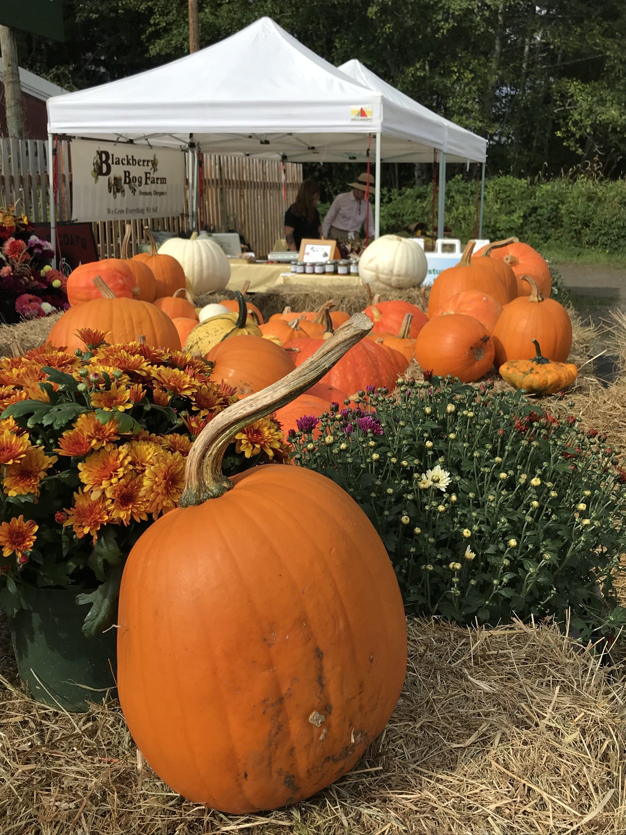 Farm booth and pumpkin.jpg