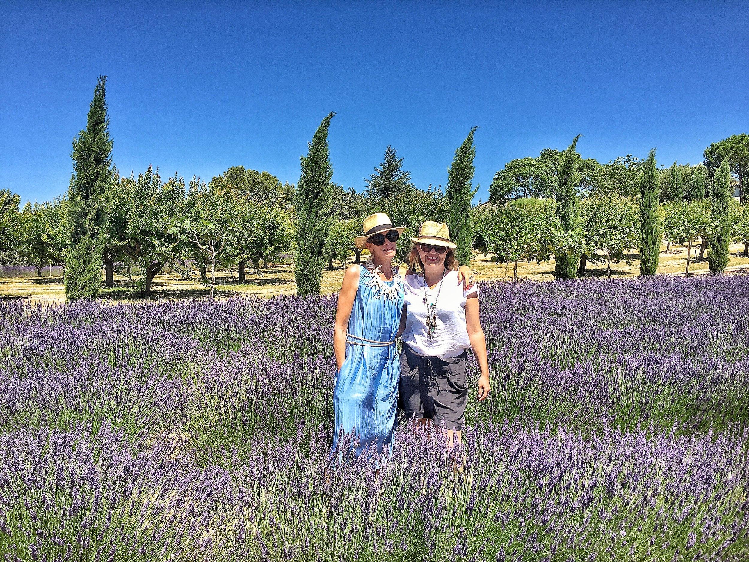 High on lavender