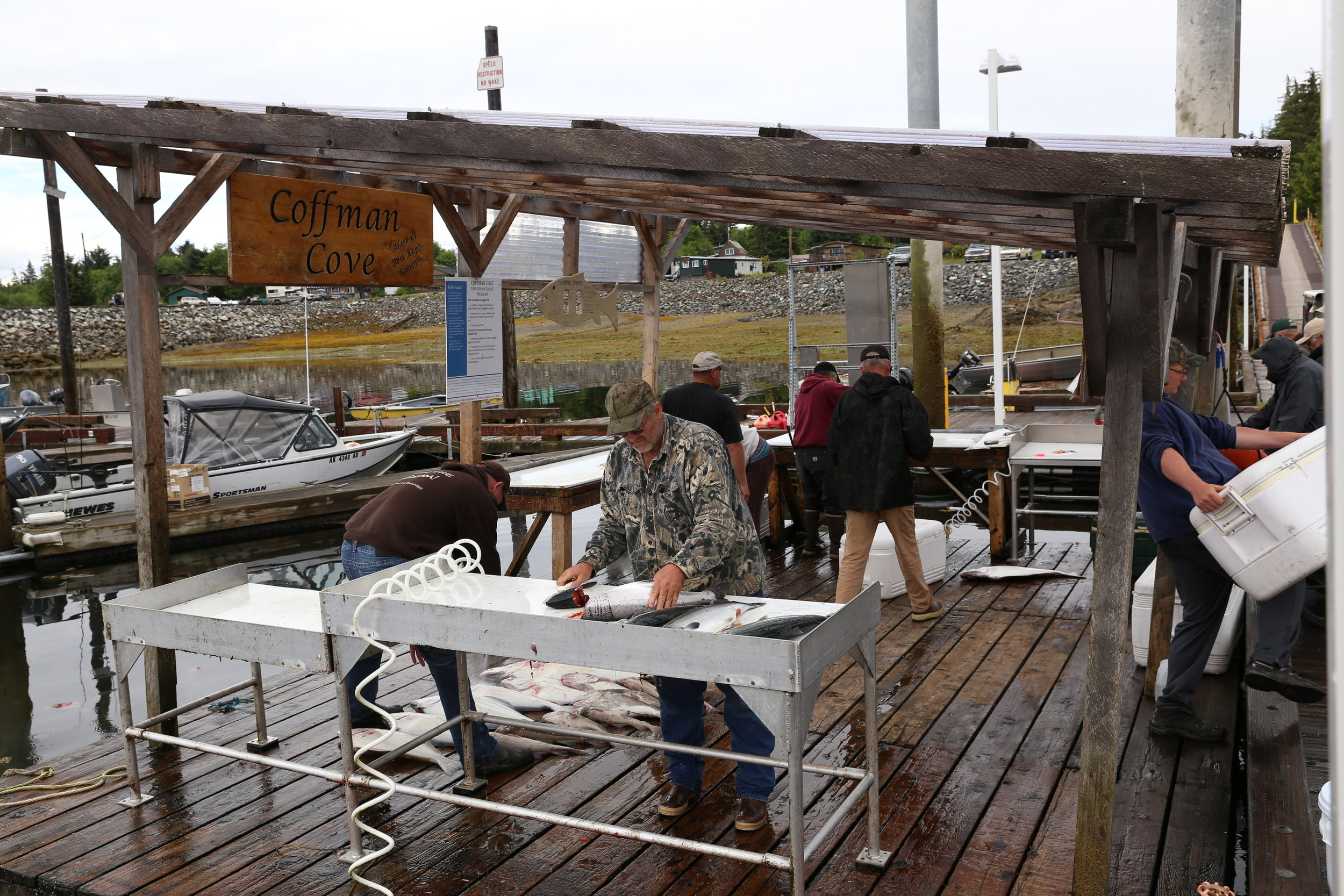 The Coffman Cove fish cleaning station can be a busy place in summer